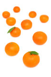 Scattered mandarins on white background (vertical shot) Royalty Free Stock Image