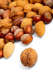 Scattered nuts Stock Image