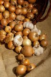 Scattered onions Royalty Free Stock Photography