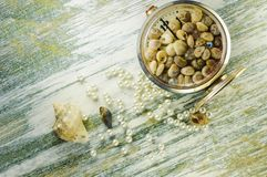 Scattered pearls and converted clock with seashells. Royalty Free Stock Photo