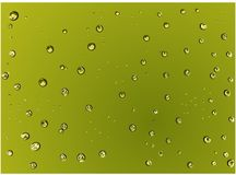 Scattered Realistic green water droplets on the green background Vector illustration. Computer graphic design illustration Vector Illustration