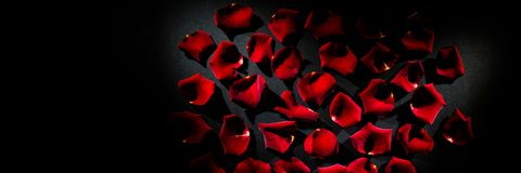 Scattered red rose petals. On table Stock Photo