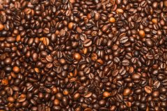 Scattered roasted coffee beans stock images