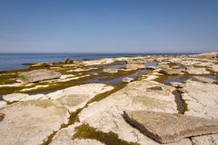 Öland costal view. Scattered rocks on the coast beach of Swedens island of Öland royalty free stock image