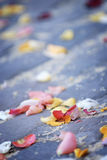 Scattered Rose Petals. On the ground at the exit of a church wedding. Angled with shallow depth of field Stock Photos