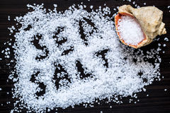 Scattered sea salt and seashell Stock Images
