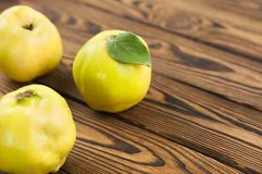 Scattered three whole fresh ripe quinces on old weathered rustic wooden table with copy space royalty free stock images