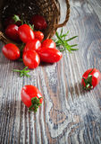 Scattered tomatoes Royalty Free Stock Photo