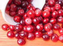 Scattered from a white cup closeup cranberries Royalty Free Stock Images