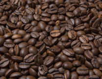 Scattering of coffee beans Royalty Free Stock Photography