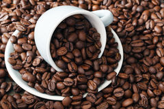 Scattering of coffee beans with cup Stock Image