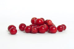 Scattering of cranberries Stock Photos