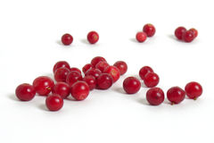 Scattering of cranberries Royalty Free Stock Photography