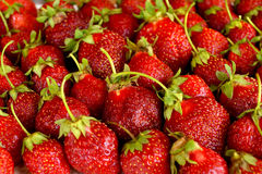 Scattering of dark red strawberry Royalty Free Stock Photography