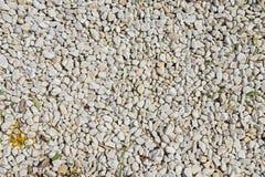 Scattering di piccole pietre di colore bianco Fotografia Stock