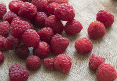 Scattering of fresh raspberries on a fabric background Stock Images