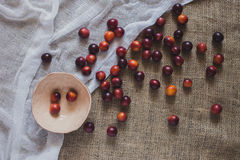 A scattering of plums Royalty Free Stock Images