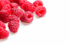 A scattering of raspberries on a white background Royalty Free Stock Photography