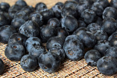 A scattering of ripe blueberries. A scattering of ripe blueberry berries closeup Stock Photography