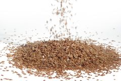 Scattering seeds of flax Royalty Free Stock Photos