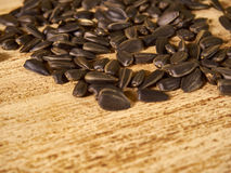 Scattering of seeds. Scattered wooden background sunflower seeds Stock Photos