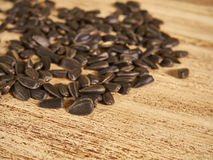 Scattering of seeds Royalty Free Stock Photo