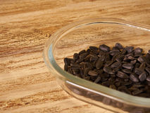Scattering of seeds. Sunflower seeds in transparent Cup on wooden background Stock Photo