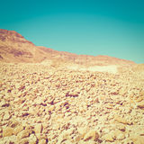 Scattering of Stones. Of the Negev Desert in Israel, Instagram Effect Royalty Free Stock Image