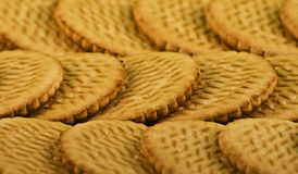 Scattering of sweet milk cookies. Macro. Small DOF Stock Photography