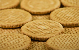 Scattering of sweet milk cookies Royalty Free Stock Image