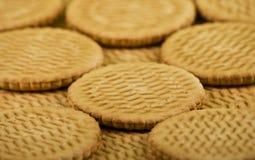 Scattering of sweet milk cookies Royalty Free Stock Image