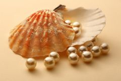 White pearls in seashell Stock Photo