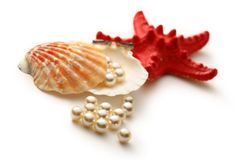 White pearls in seashell Stock Images