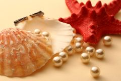 White pearls in seashell Stock Image