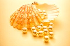Scattering white pearls in seashell Stock Photo