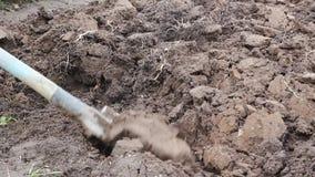 Scavatura profonda del suolo Preparando per la coltivazione delle verdure stock footage