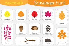 Scavenger hunt, autumn walk, different colorful autumn pictures for children, fun education search game for kids, development for. Toddlers, preschool activity royalty free illustration