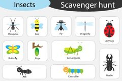 Scavenger hunt, insects theme, different colorful pictures for children, fun education search game for kids, development for royalty free illustration