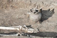 Scavi Archaeological Le ossa umane di resti delle gambe di scheletro/piede nella terra, con i manufatti trovati nella tomba hanno immagini stock