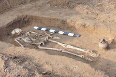 Scavi Archaeological Ossa umane dello scheletro, crani di resti nella terra, con i manufatti trovati nella tomba e nel rituale e fotografie stock libere da diritti