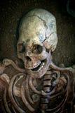 Scavi archeologici di uno scheletro umano antico e di un cranio umano immagini stock