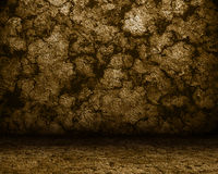 Scavi con una parete di pietra e un pavimento marroni Immagini Stock Libere da Diritti