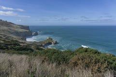 Scavi una galleria la spiaggia, situata a Dunedin, isola del sud, Nuova Zelanda Immagini Stock