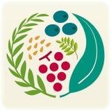 Sceau végétal (vecteur) Photo libre de droits