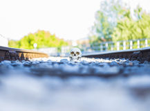 Sceene смерти Стоковые Фотографии RF