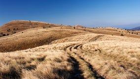 Sceenery da montanha Imagem de Stock