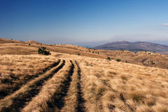 Sceenery de montagne Image libre de droits