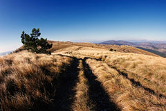 Sceenery de montagne Photographie stock libre de droits