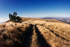 Sceenery della montagna Fotografia Stock Libera da Diritti