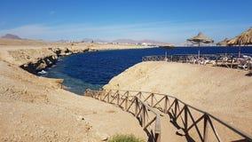 Sceicco della birra inglese di incanto Egypt gennaio Fotografia Stock
